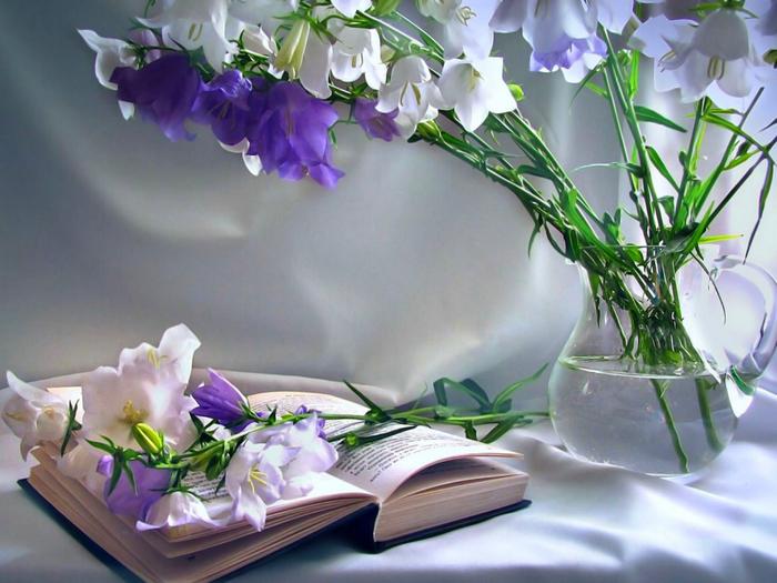 Колокольчики цветы открытки 61