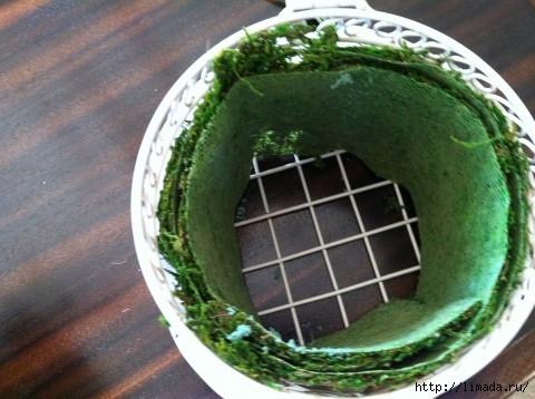 Moss-in-Birdcage-480x358 (480x358, 119Kb)