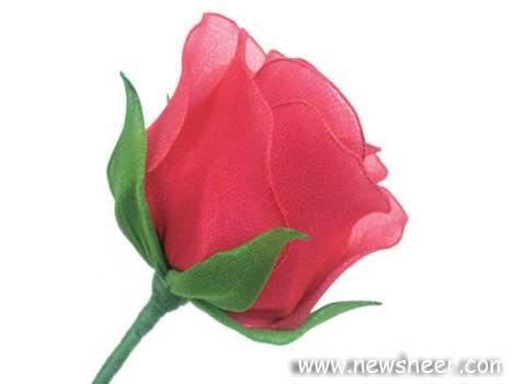 newsheer_rose25 (468x351, 36Kb)