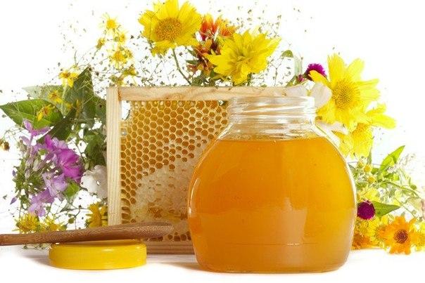 мёд (604x403, 59Kb)