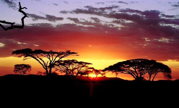 beautiful_africa_photos07 (700x423, 63Kb)