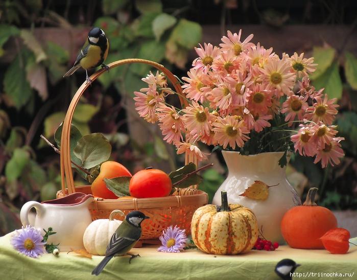 В саду моих фантазий щебечут птицы!
