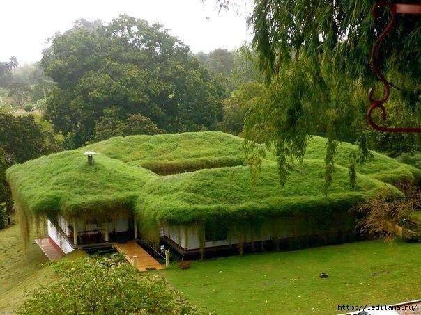 зелёный дом (604x453, 198Kb)