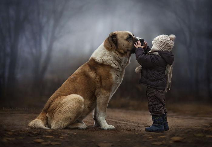 мальчик с собакой. фотограф Елена Шумилова. shumilova (700x484, 41Kb)