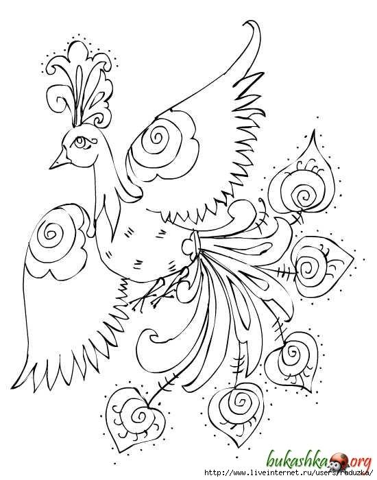 ptica (550x700, 156Kb)