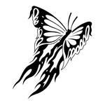 ������ butterfly stencil (30) (700x700, 118Kb)