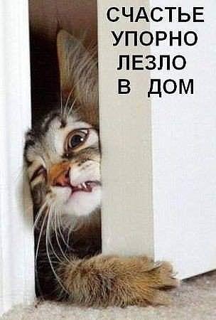 рптово (304x450, 60Kb)