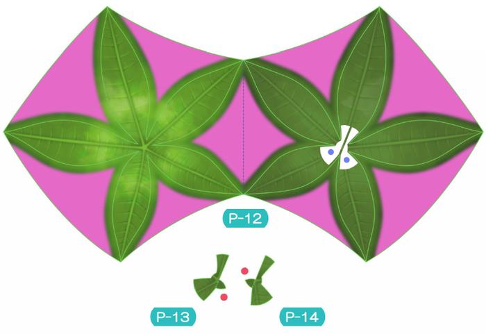 Пахира (Pachira) из бумаги. Цветные шаблоны для распечатки (5) (700x481, 228Kb)