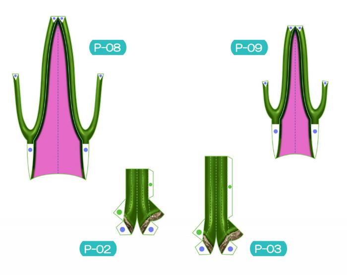Пахира (Pachira) из бумаги. Цветные шаблоны для распечатки (8) (700x555, 141Kb)