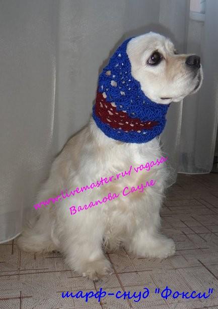 связать шарфик для собаки?