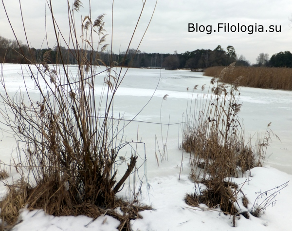 Замерзшее озеро/3241858_bor17 (600x474, 179Kb)
