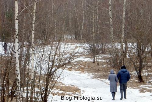 Зимняя дорога в Серебряном бору/3241858_bor6 (499x337, 132Kb)