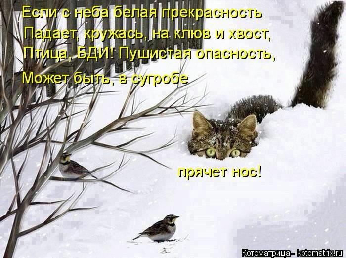 1393165441_cm_20140221_03662_005 (700x522, 182Kb)