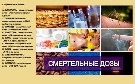 2013-02-08_к110645 (440x275, 252Kb)