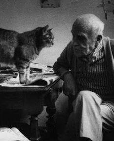 cats (2) (234x288, 25Kb)