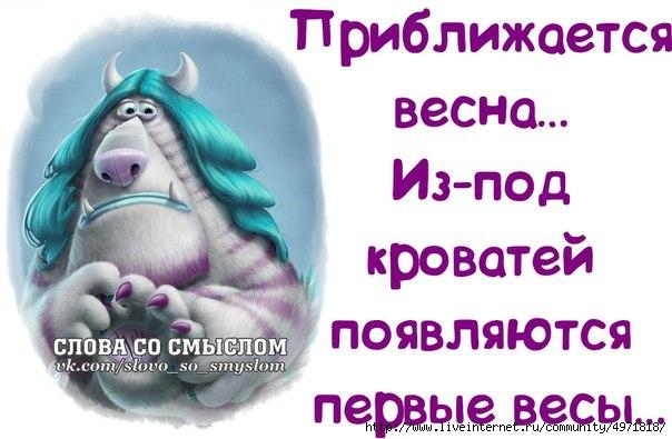 4611276_1o9Uo6aByB4 (604x395, 130Kb)