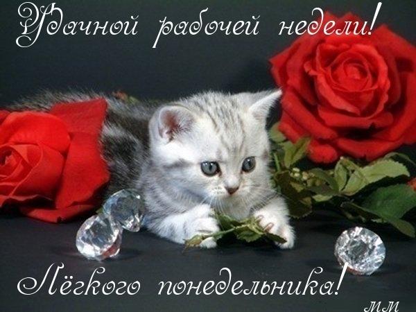 http://img0.liveinternet.ru/images/attach/c/10/110/5/110005174_3768491_.jpg