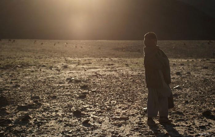 25-летию окончания ведения боевых действий в Афганистане посвящается