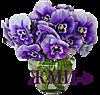 0_122157_863f19d7_XS (100x95, 20Kb)
