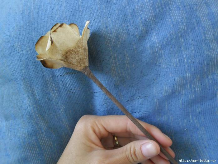 Розы из кофейных фильтров. Мастер-класс (18) (700x525, 324Kb)