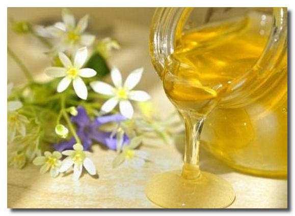 мед и травы/3862295_ (579x425, 26Kb)