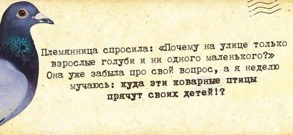 XOECUmj9v2I (604x280, 171Kb)