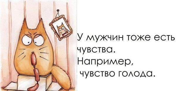 1372189953_frazochki-25 (604x311, 77Kb)