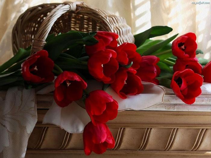 tulipany-koszyk-1 (700x525, 179Kb)