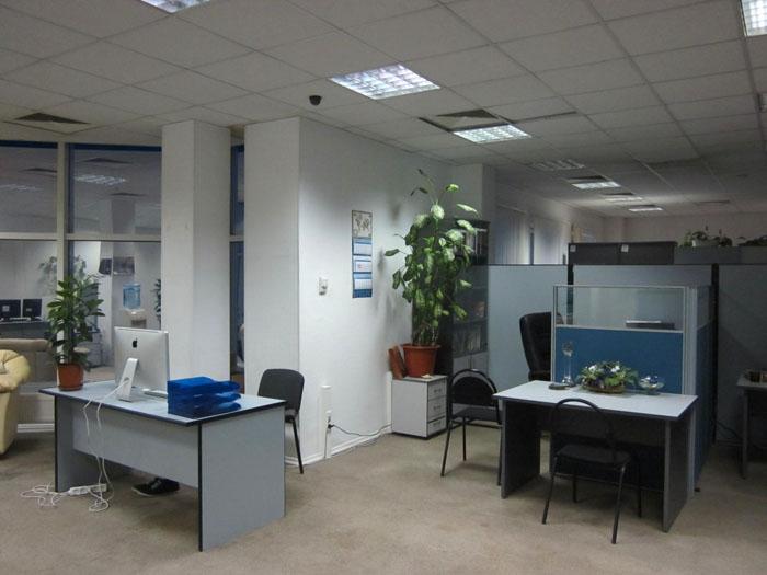 05 Офисные одуванчики (700x525, 177Kb)