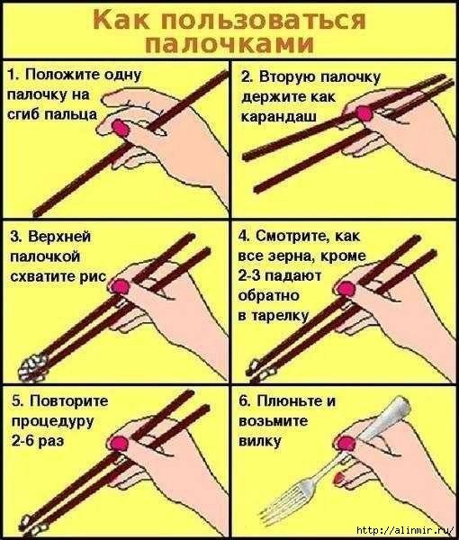5283370_kak_polzovatsya_palochkami (510x600, 169Kb)