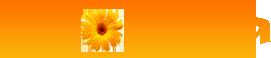 logo (271x58, 8Kb)