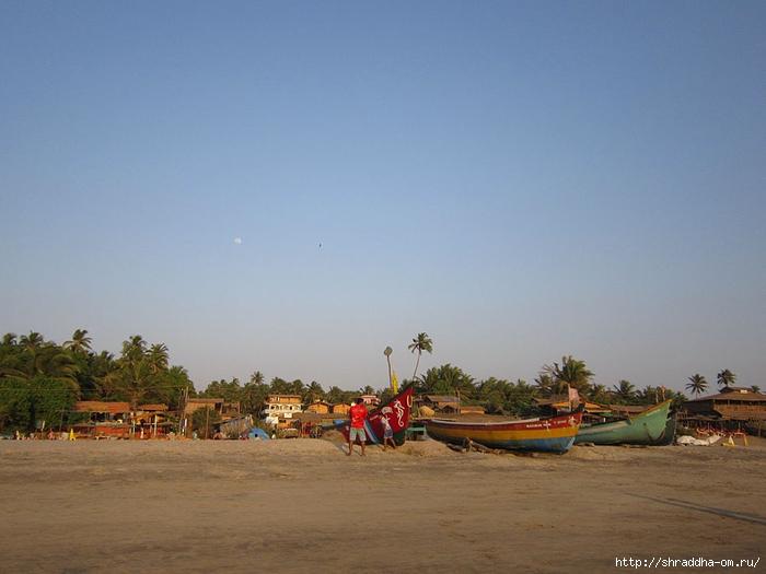India Goa 2014 (23) (700x525, 204Kb)