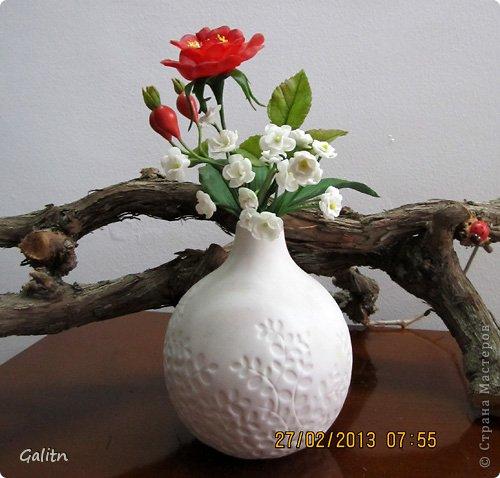 1394035994_Galitnflor_7 (500x478, 46Kb)