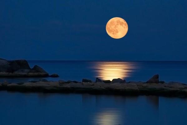 при какой фазе луны ловится рыба