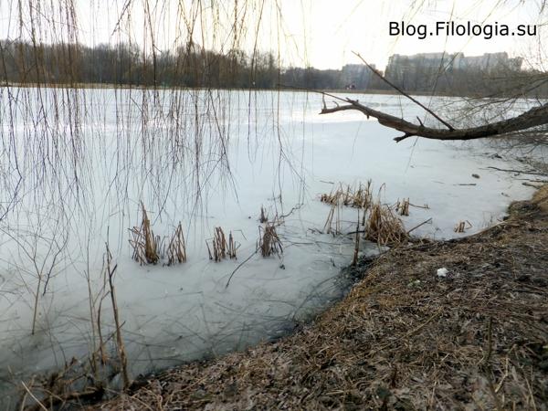 Покровское-Стрешнево. На берегу озера ранней весной/3241858_PS06 (600x450, 188Kb)