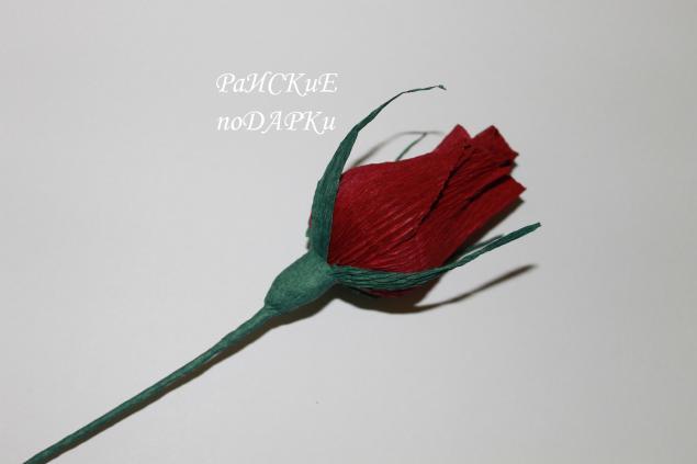 Закрытые розы из гофрированной бумаги своими руками