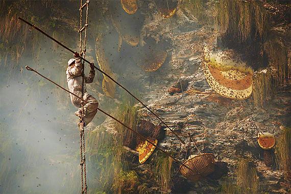 охотники за медом непал фото 2 (570x380, 333Kb)