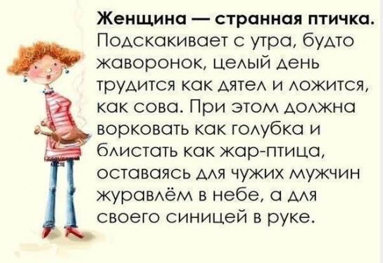 2014-02-08_071754 (544x374, 63Kb)