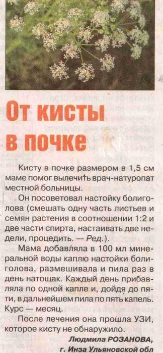 5393736_nevralgiya_troinichnogo_cr2 (324x700, 193Kb)