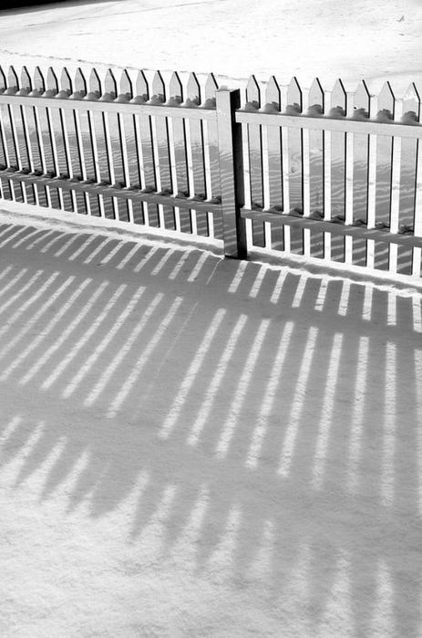 забор фото 2 (463x700, 198Kb)