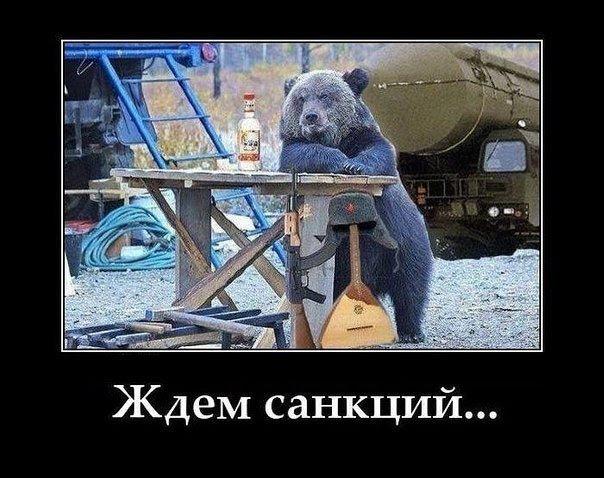 Россия в ожидании санкций Запада. Русский медведь. Юмор./3241858_baer (604x478, 88Kb)