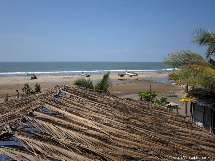 India Goa 2014 (63) (700x525, 325Kb)