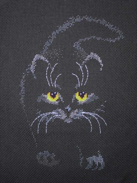 Черный кот схема вышивки скачать