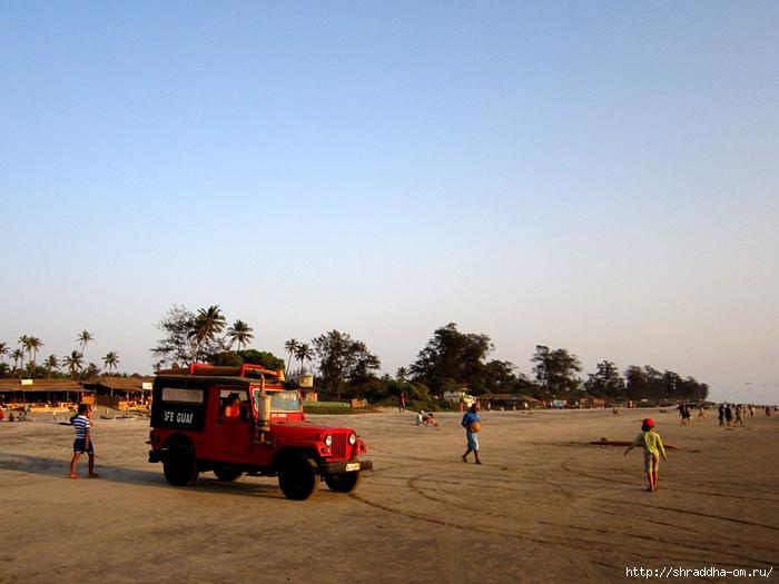 India Goa 2014 (92) (700x525, 234Kb)