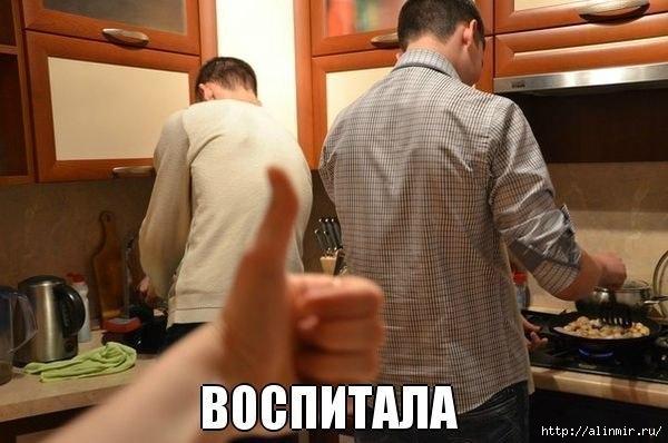 5283370_myjchini_na_kyhne (600x398, 119Kb)