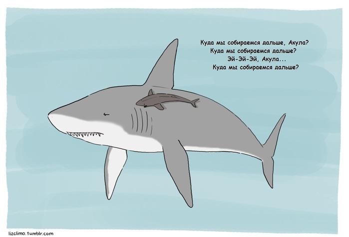 art-Lizclimo-акула-рыба-прилипала-465492 (700x474, 46Kb)