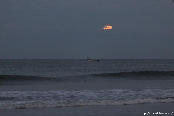 India Goa 2014 (50) (700x466, 149Kb)
