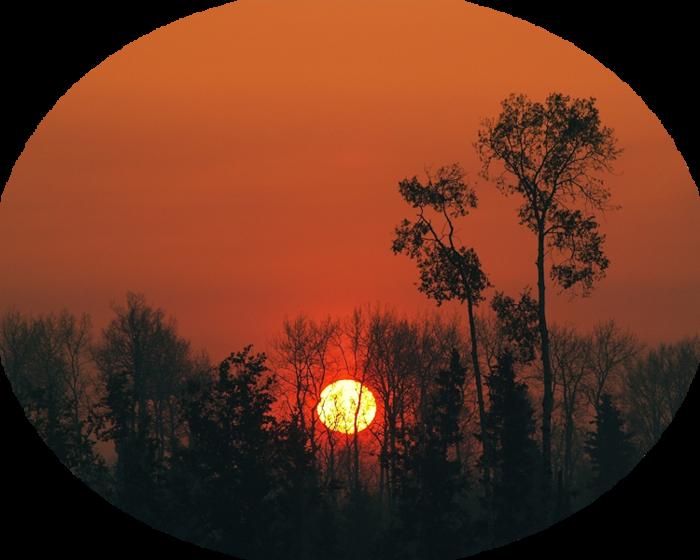 anypics.ru-1853 (700x560, 558Kb)