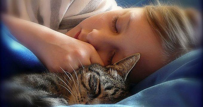 Уроки здорового сна