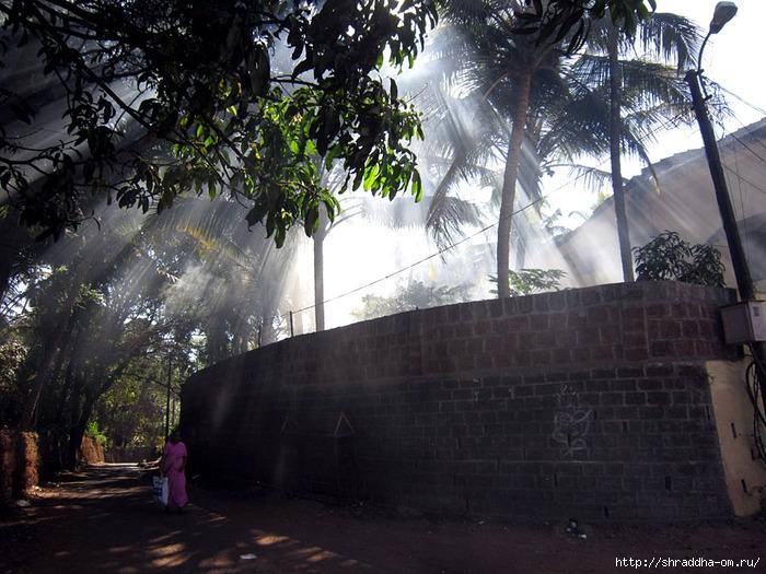 India Goa 2014 (124) (700x525, 296Kb)